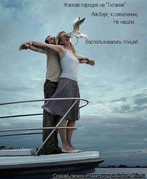 """Котоматрица: Жалкая пародия на """"Титаник"""". Айсберг, к сожалению, Не нашли... Воспользовались птицей..."""