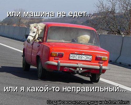 Котоматрица: или машина не едет... или я какой-то неправильный...