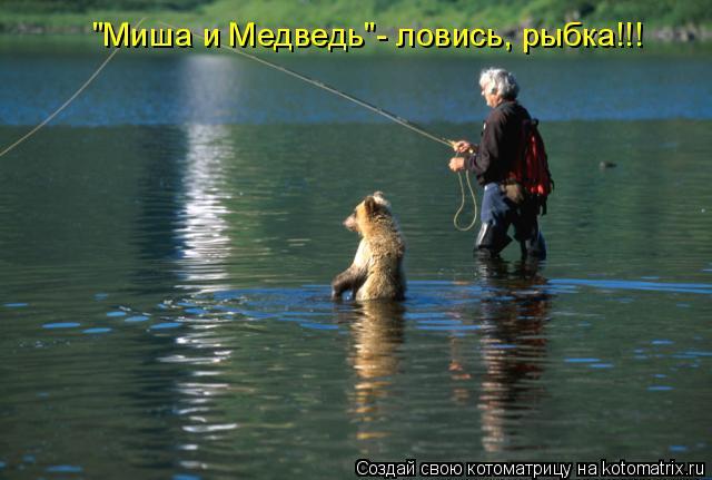 "Котоматрица: ""Миша и Медведь""- ловись, рыбка!!!"