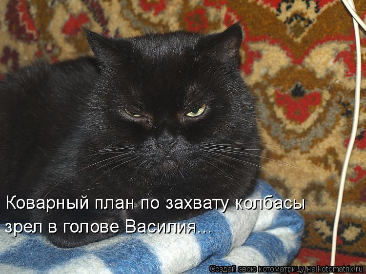 Котоматрица: Коварный план по захвату колбасы зрел в голове Василия...