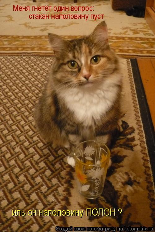 Котоматрица: Меня гнетёт один вопрос: стакан наполовину пуст стакан наполовину пуст иль он наполовину ПОЛОН ?