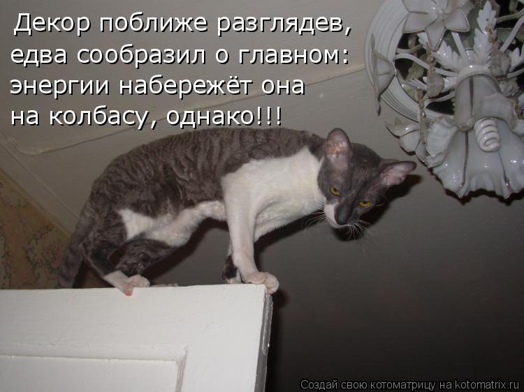 Котоматрица: Декор поближе разглядев, едва сообразил о главном: энергии набережёт она на колбасу, однако!!!
