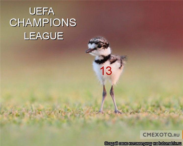 Котоматрица: UEFA CHAMPIONS LEAGUE 13