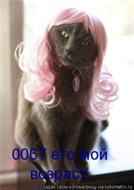 Котоматрица: 0067 ето мой возраст