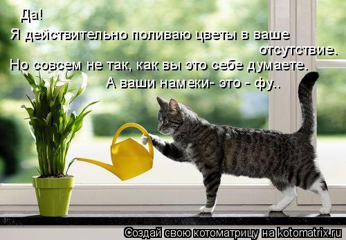 Котоматрица: Да!  Я действительно поливаю цветы в ваше отсутствие. А ваши намеки- это - фу.. Но совсем не так, как вы это себе думаете.