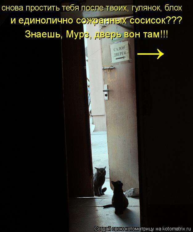 Котоматрица: Знаешь, Мурз, дверь вон там!!! → снова простить тебя после твоих, гулянок, блох  и единолично сожранных сосисок???