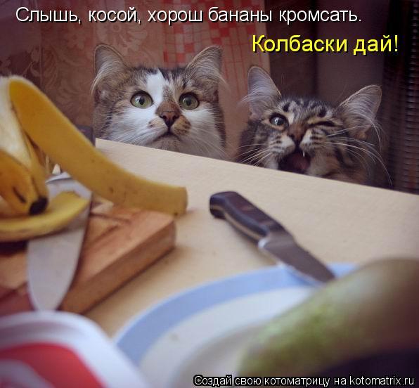 Котоматрица: Слышь, косой, хорош бананы кромсать.  Колбаски дай!