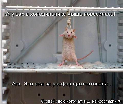 Котоматрица: -А у вас в холодильнике мышь повесилась! -Ага. Это она за рокфор протестовала...