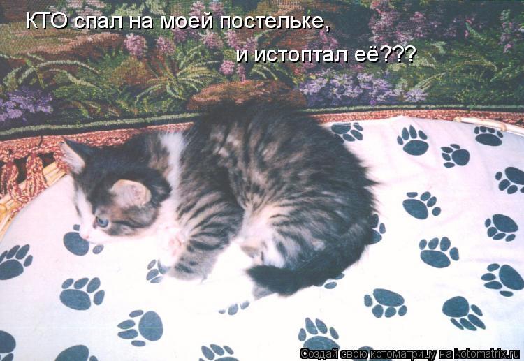 http://kotomatrix.ru/images/lolz/2009/12/02/422304.jpg