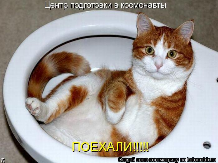 Котоматрица: Центр подготовки в космонавты ПОЕХАЛИ!!!!!