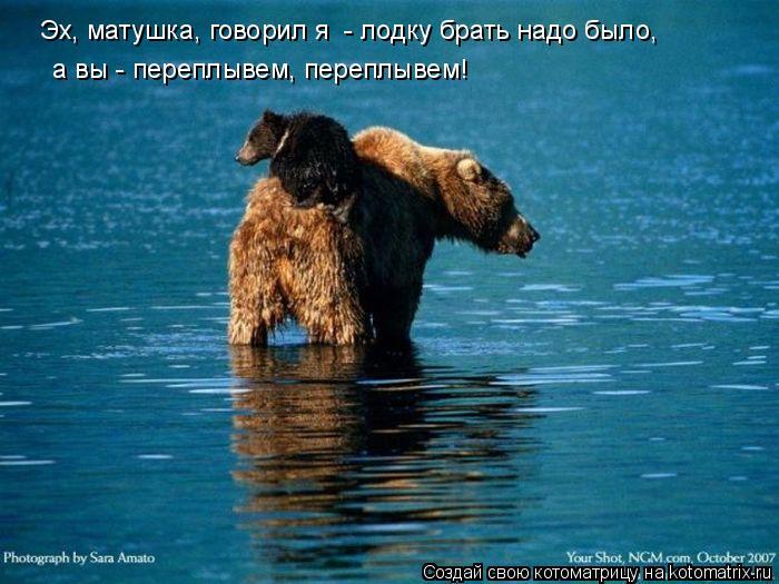 Котоматрица: Эх, матушка, говорил я  - лодку брать надо было,  а вы - переплывем, переплывем!