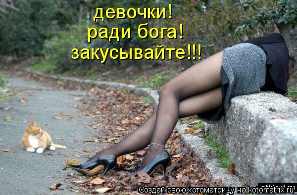 Котоматрица: девочки! ради бога! закусывайте!!!