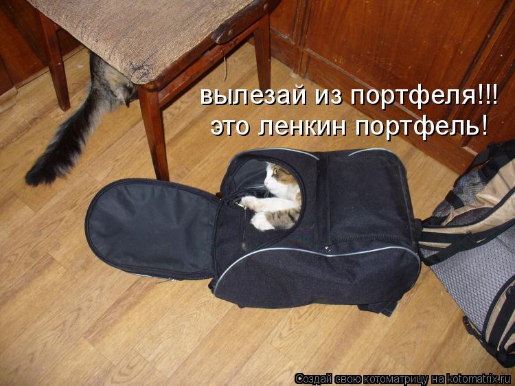 Котоматрица: вылезай из портфеля!!! это ленкин портфель!