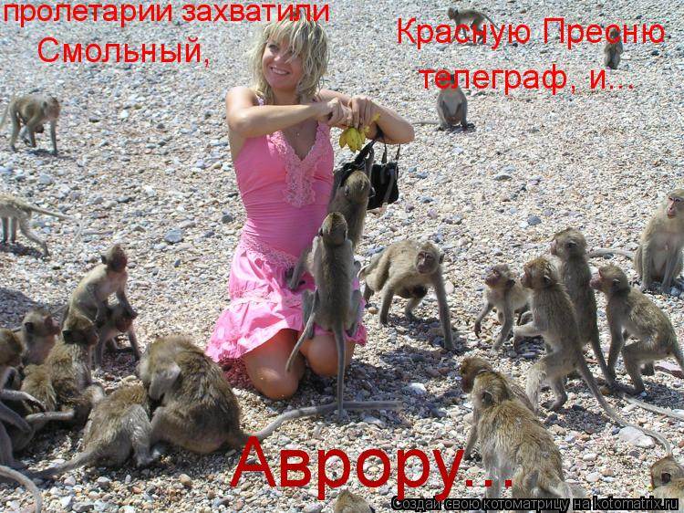 Котоматрица: пролетарии захватили  Смольный,  Красную Пресню телеграф, и... Аврору...