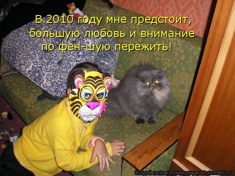 Котоматрица: В 2010 году мне предстоит, большую любовь и внимание  по фен-шую пережить!