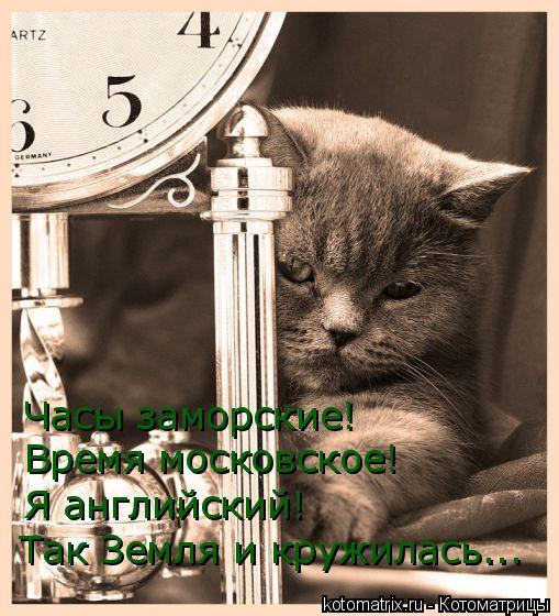Котоматрица: Часы заморские! Время московское! Я английский! Так Земля и кружилась...