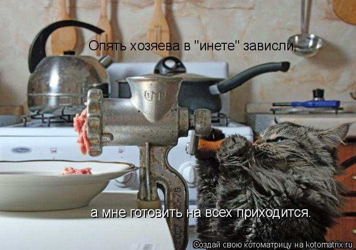"""Котоматрица: Опять хозяева в """"инете"""" зависли, а мне готовить на всех приходится."""