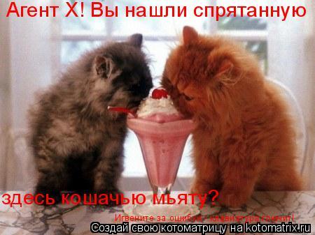 Котоматрица: Агент Х! Вы нашли спрятанную здесь кошачью мьяту? Игвените за ошибки - клавиатура глючит!