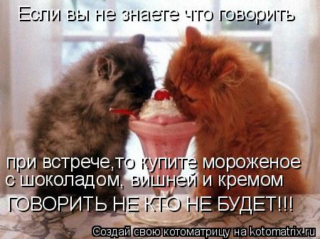 Котоматрица: Если вы не знаете что говорить при встрече,то купите мороженое с шоколадом, вишней и кремом ГОВОРИТЬ НЕ КТО НЕ БУДЕТ!!!