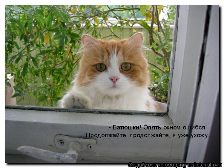 Котоматрица: - Батюшки! Опять окном ошибся! Продолжайте, продолжайте, я уже ухожу...