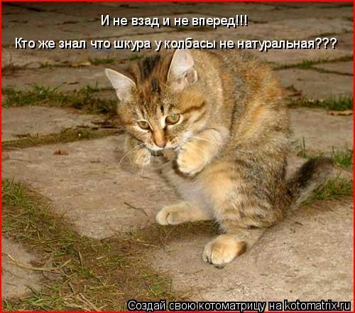 Котоматрица: Кто же знал что шкура у колбасы не натуральная??? И не взад и не вперед!!!