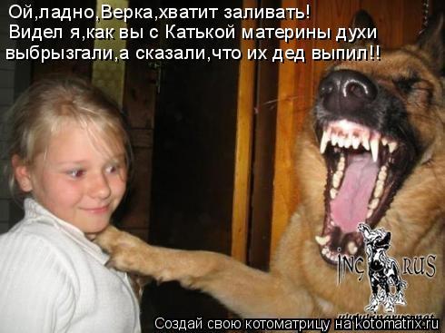 Котоматрица: Ой,ладно,Верка,хватит заливать! Видел я,как вы с Катькой материны духи выбрызгали,а сказали,что их дед выпил!!