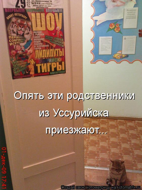 Котоматрица: Опять эти родственники  из Уссурийска приезжают...