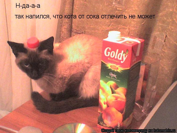 Котоматрица: Н-да-а-а так напился, что кота от сока отлечить не может так напился, что кота от сока отлечить не может