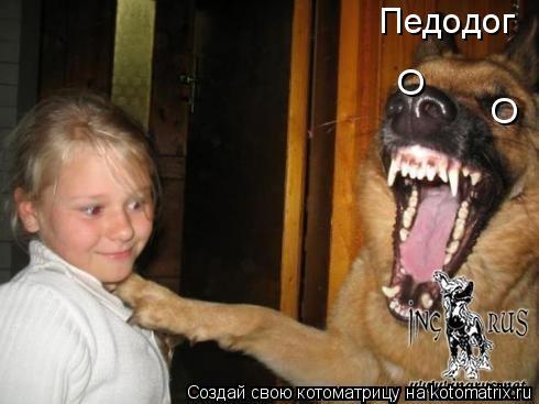 Котоматрица: O O Педодог
