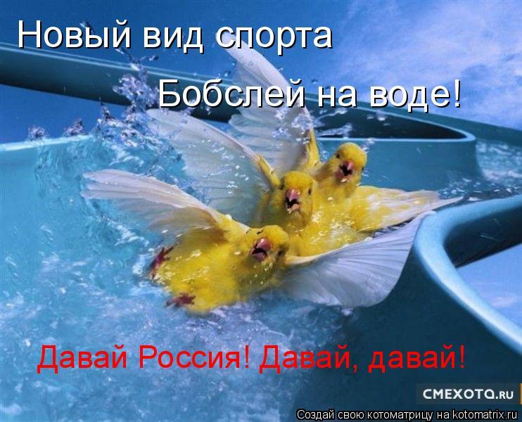 Котоматрица: Новый вид спорта Бобслей на воде! Давай Россия! Давай, давай!
