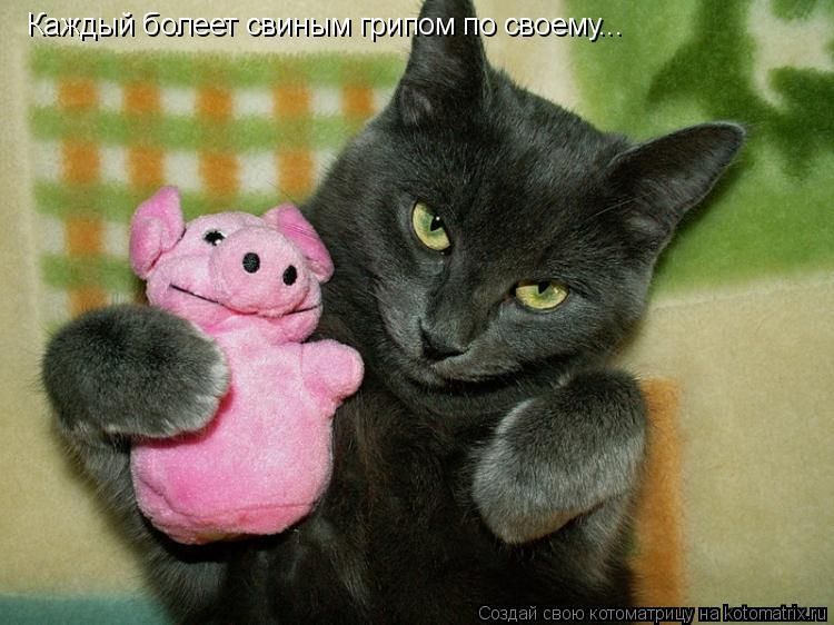 Котоматрица: Каждый болеет свиным грипом по своему...