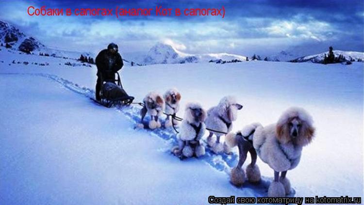 Котоматрица: Собаки в сапогах (аналог Кот в сапогах)