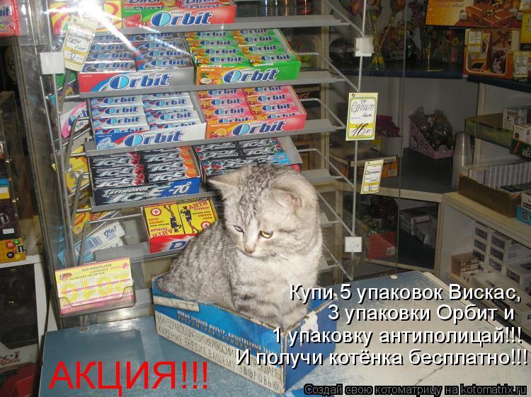 Котоматрица: АКЦИЯ!!! Купи 5 упаковок Вискас,  3 упаковки Орбит и 1 упаковку антиполицай!!!  И получи котёнка бесплатно!!!