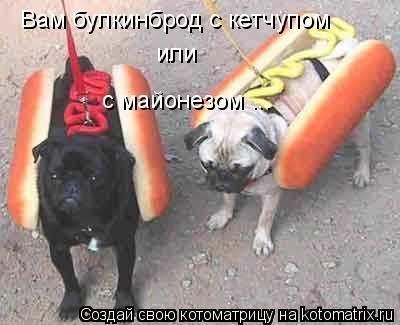 Котоматрица: Вам булкинброд с кетчупом или с майонезом ...