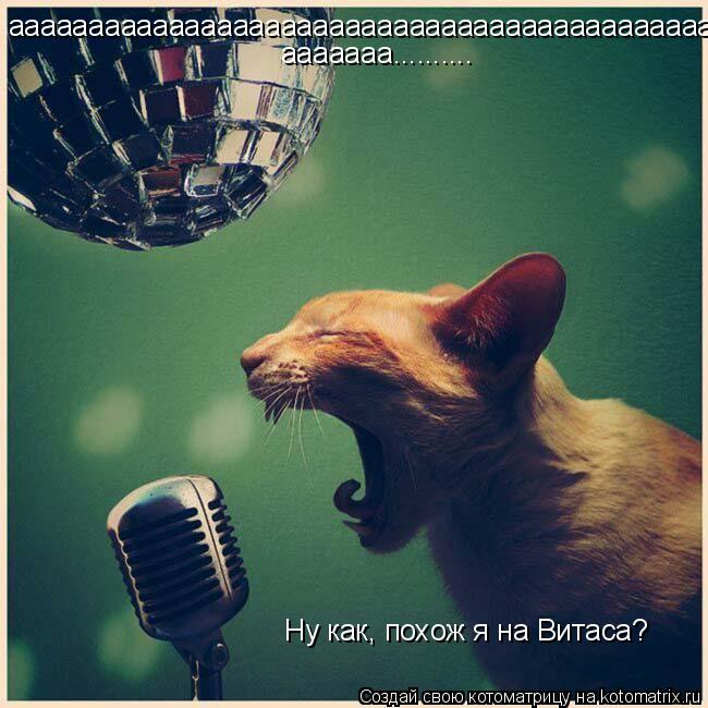 Котоматрица: аааааааааааааааааааааааааааааааааааааааааааа ааааааа.......... Ну как, похож я на Витаса?