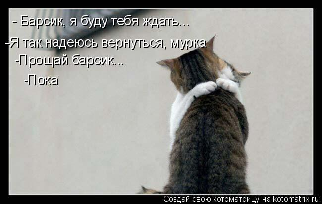 Котоматрица: - Барсик, я буду тебя ждать... -Я так надеюсь вернуться, мурка -Прощай барсик... -Пока