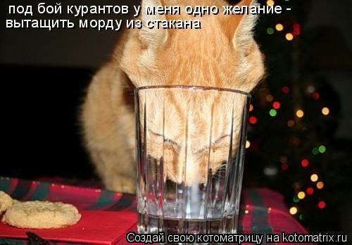 Котоматрица: под бой курантов у меня одно желание -  вытащить морду из стакана