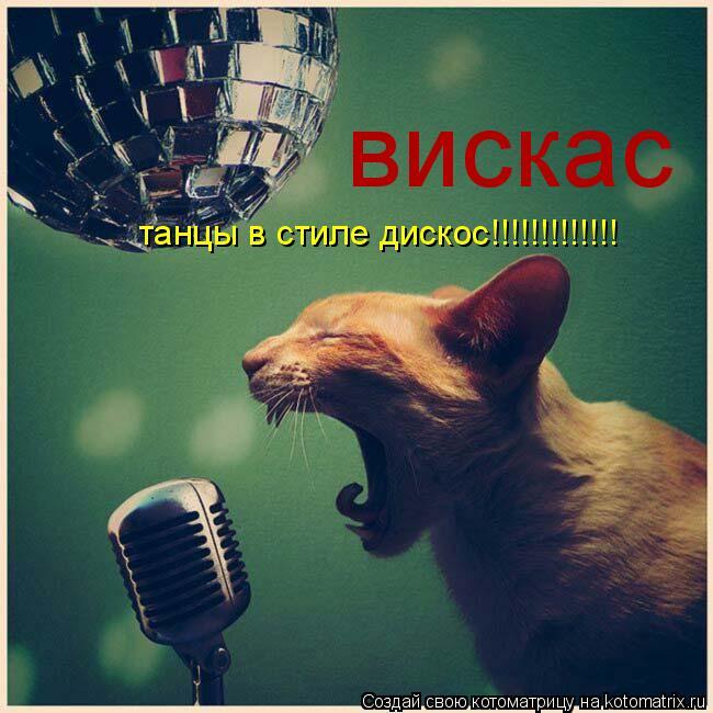 Котоматрица: вискас танцы в стиле дискос!!!!!!!!!!!!!