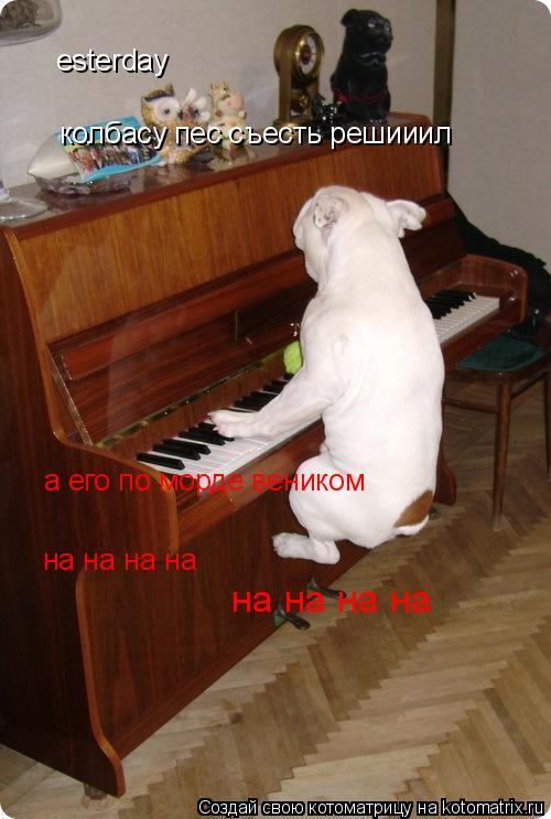Котоматрица: esterday колбасу пес съесть решииил а его по морде веником на на на на на на на на