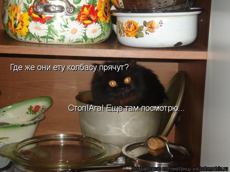Котоматрица: Стоп!Ага! Еще там посмотрю... Где же они ету колбасу прячут?