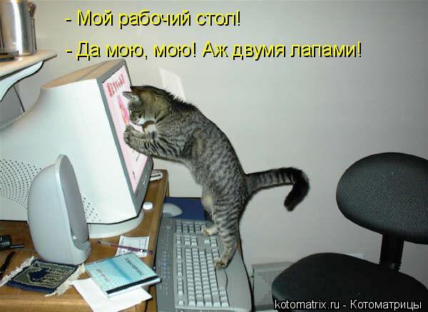Котоматрица: - Мой рабочий стол! - Да мою, мою! Аж двумя лапами!