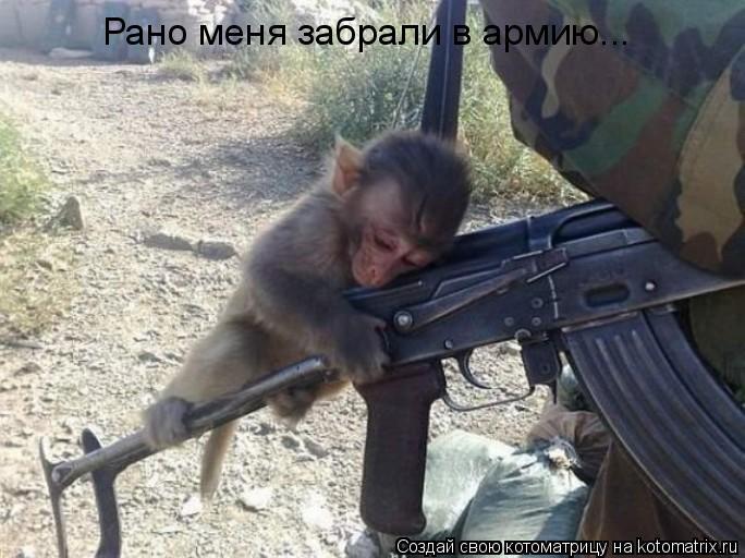 Котоматрица: Рано меня забрали в армию...