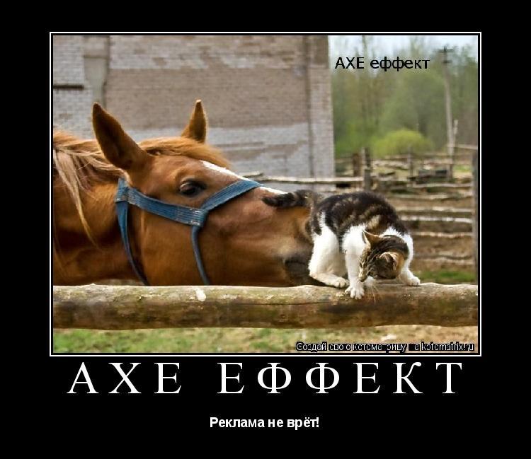 Котоматрица: Axe еффект Реклама не врёт!
