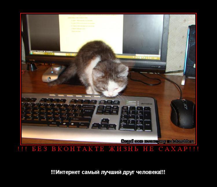 Котоматрица: !!! Без Вконтакте жизнь не сахар!!! !!!Интернет самый лучший друг человека!!!