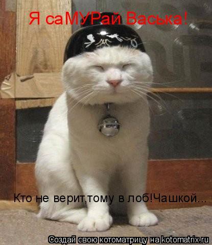 Котоматрица: Я саМУРай Васька! Кто не верит,тому в лоб!Чашкой...