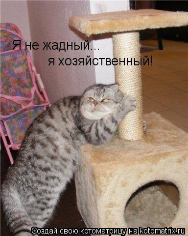 Котоматрица: Я не жадный... я хозяйственный!