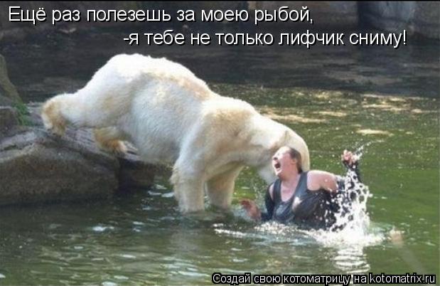 Котоматрица: Ещё раз полезешь за моею рыбой, -я тебе не только лифчик сниму!