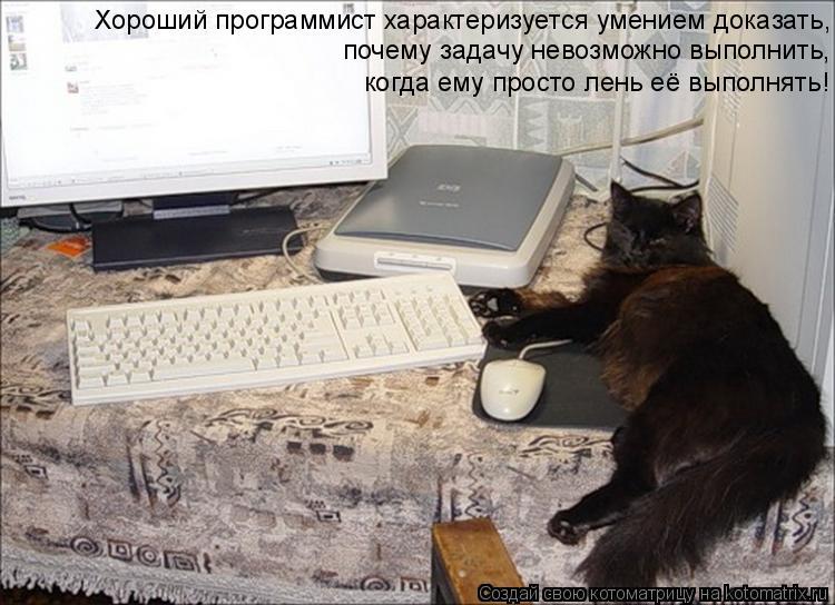 Котоматрица: Хороший программист характеризуется умением доказать, почему задачу невозможно выполнить, когда ему просто лень её выполнять!