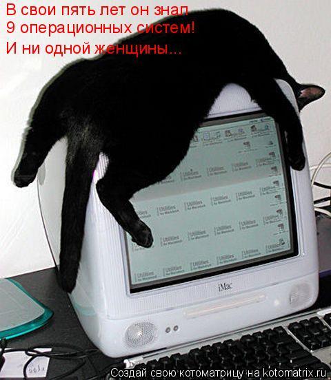 Котоматрица: В свои пять лет он знал  9 операционных систем! И ни одной женщины...