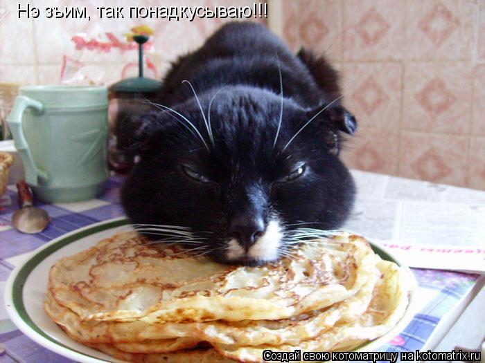 Котоматрица: Нэ зъим, так понадкусываю!!!